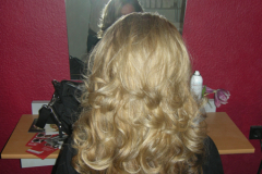 ds-hairstyling_1
